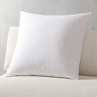 "FBTS Prime Pillow Insert 1 Pack 18""x18"" Square Premium Hypoallergenic Sham Stuffer"