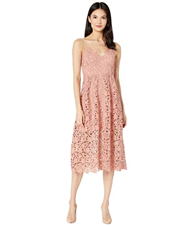 ASTR the Label Lace A-Line Midi Dress (Blush) Women
