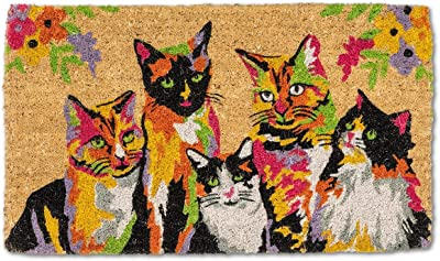 Abbott Collection 35-FWD-AN-2332 Abstract Cats Doormat, Multi Color