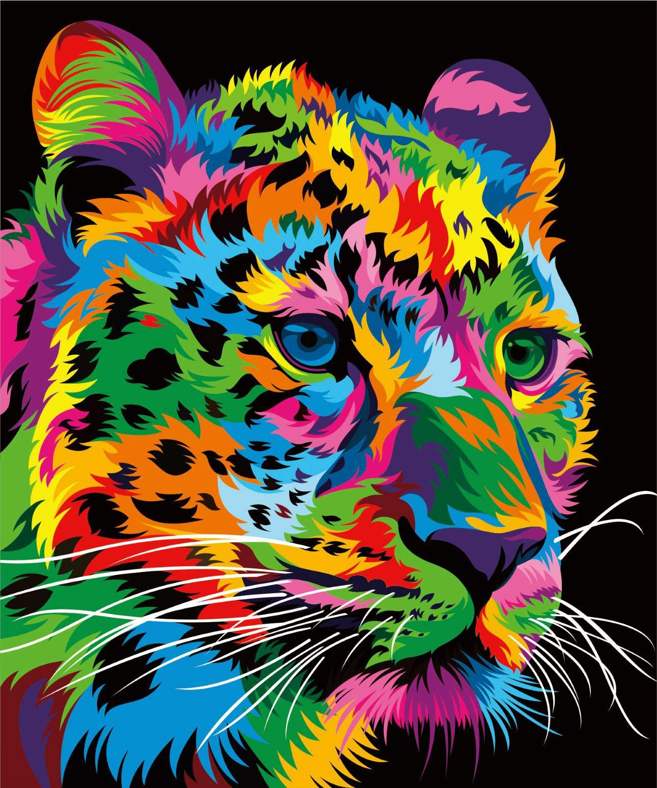 Colorful Cat Face DIY Paint By Number Kit Paint On Canvas Arylic Painting 16X20/""