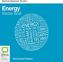 Energy: Bolinda Beginner Guides