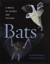 Best bats a world of science and mystery Reviews