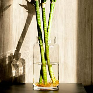 Best vintage hand blown art glass vases Reviews