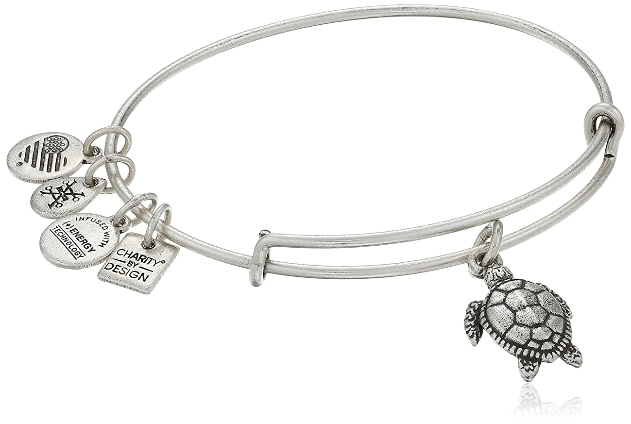 Alex and Ani Charity by Design Turtle Rafaelian Bangle Bracelet