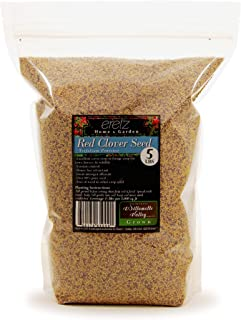 Red Clover Legume Seed by Eretz - Choose Size! Willamette Valley, Oregon Grown, No Fillers, No Coatings, No Weed Seeds…