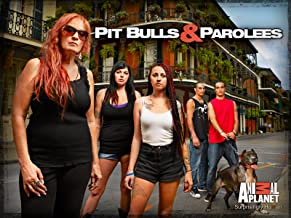 Pit Bulls and Parolees Season 4