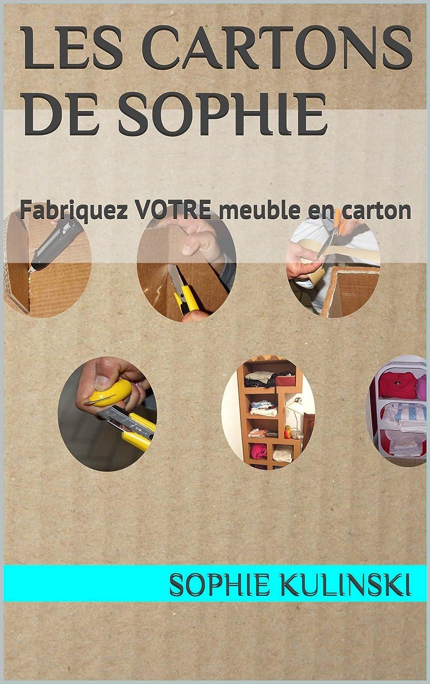 論文定義運動Les cARTons de Sophie: Fabriquez VOTRE meuble en carton (Les bases du cartonnage) (French Edition)