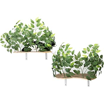 On2Pets Cat Furniture Canopy Shelves for Climbing, Playing and Relaxing