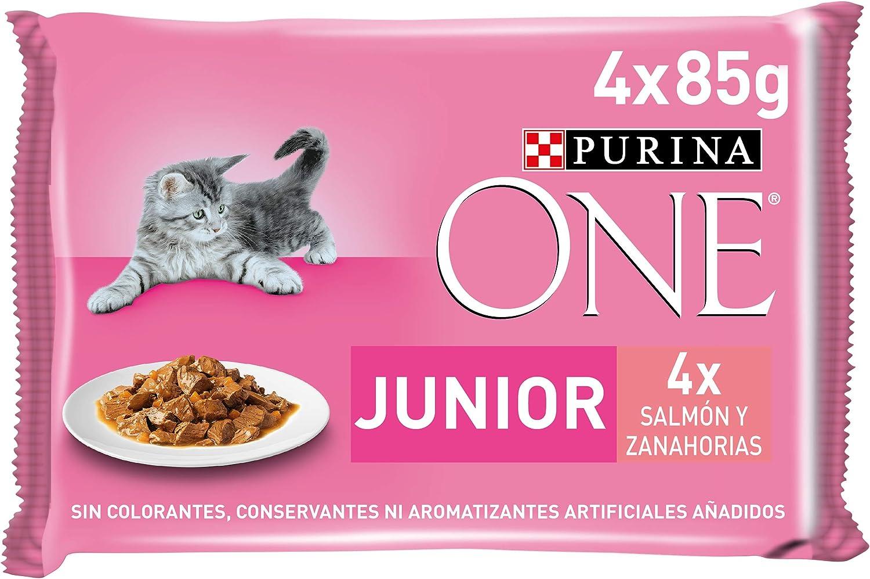 Purina ONE comida húmeda para gato, gatito, junior, gatos hasta 1 año filetes en salsa con salmón 12 x [4 x 85 g]