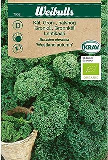 Weibulls Kål, grön- KRAV Westland autumn