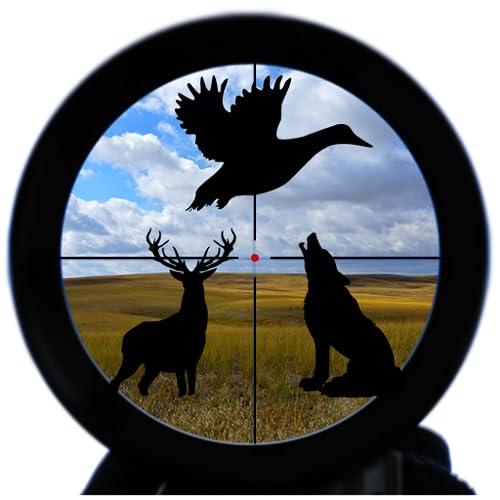 Hunting calls studio