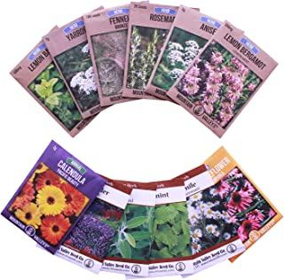 Herbal Tea Herb Seed Mix - Non-GMO Herbal Tea Seeds - Lemon Balm, Chamomile, Anise, Rosemary, Yarrow, Peppermint, More