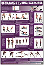 Resistance Tubing Exercises Poster/Chart -Back/Legs/Biceps/Chest & Triceps Laminated; - Stretch Tubing Charts - Stretch Band Chart - Exercise Tubing ... Fitness - Group Fitness with Resistance Bands