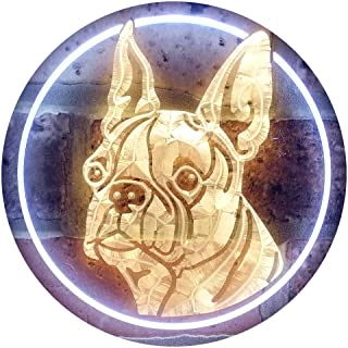 Boston Terrier Dog Illuminated Dual Color LED Neon Sign White & Yellow 600 x 400mm st6s64-i0656-wy