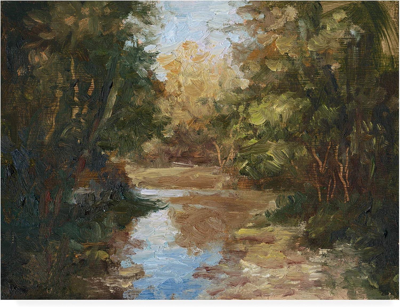 Trademark Fine Art Winding River by Mary Jean Weber, 14x19