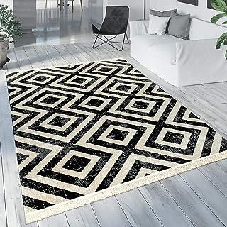 Paco Home Tapis Noir Blanc Balcon Terrasse Extérieur Style Scandinave Motif Losanges Robuste, Dimension:120x170 cm