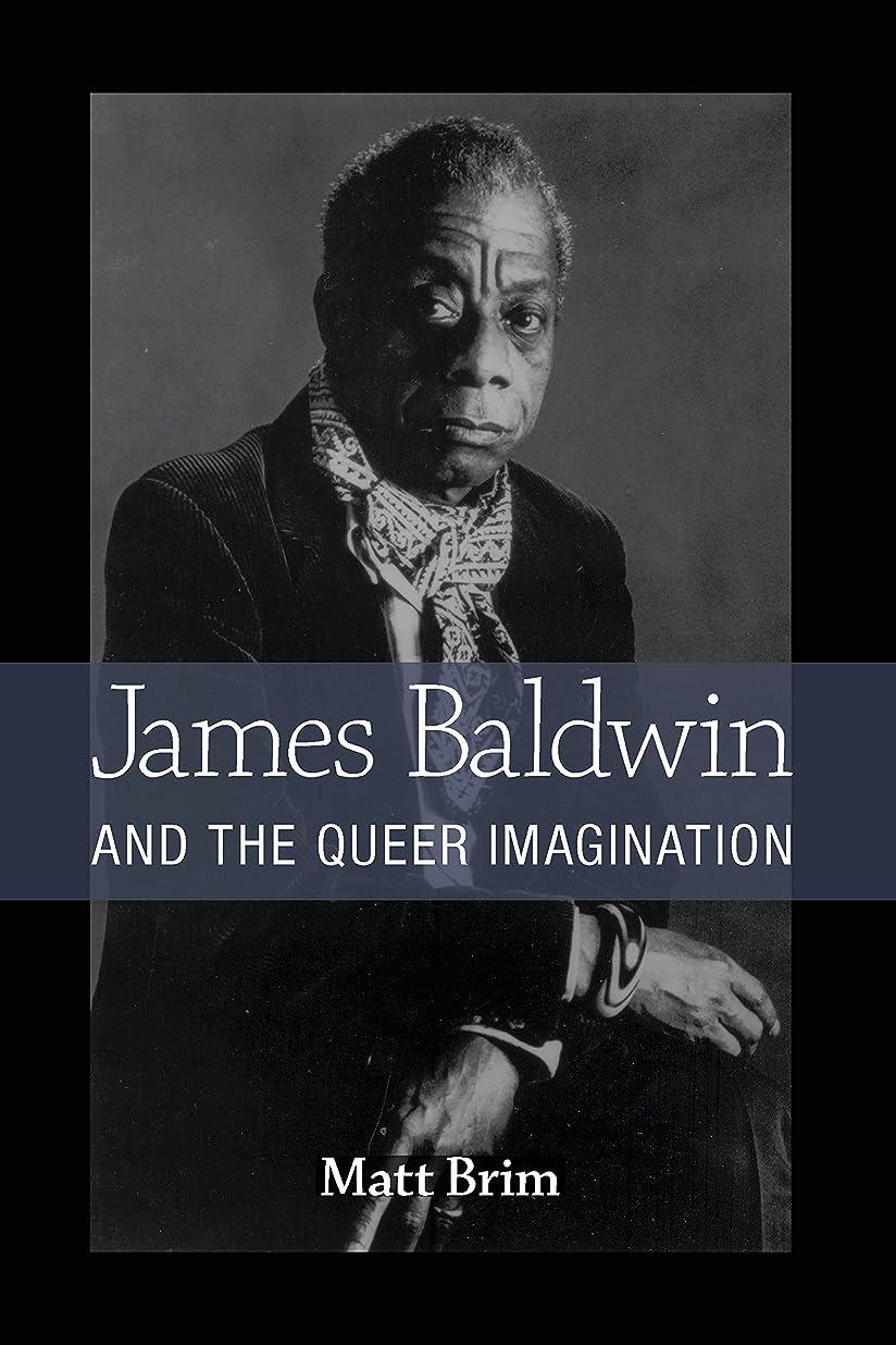 シャベル反響する趣味James Baldwin and the Queer Imagination (English Edition)