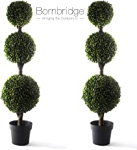 live topiaries for outdoors