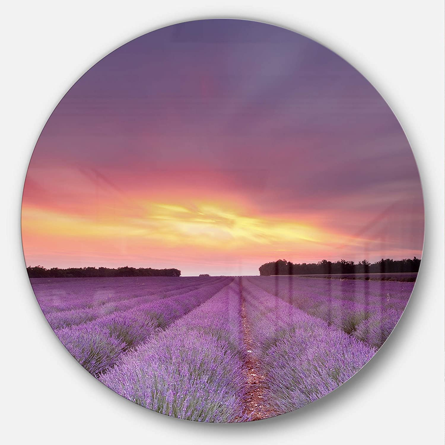 Designart MT13079C11 Beautiful Sunset Over Lavender Rows Landscape Metal Artwork, Purple, 11  x 11