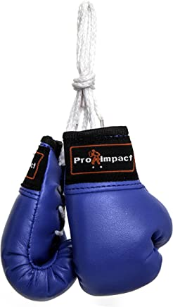 69433d570 Amazon.fr   mini gant - Boxe   Sports et Loisirs