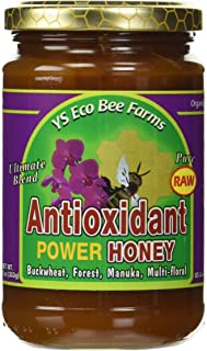 Raw Antioxidant Power Honey YS Eco Bee Farms 13.5 oz Paste