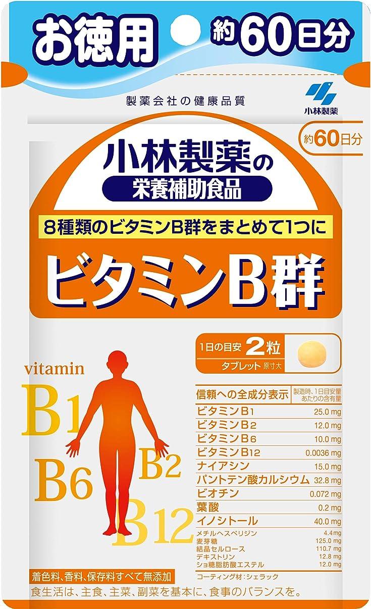実験用心深い弾薬小林製薬の栄養補助食品 ビタミンB群 お徳用 約60日分 120粒