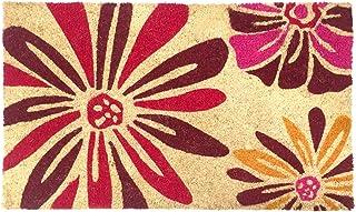 """Natural Coir Coco Fiber Non-Slip Outdoor/Indoor Doormat, 18x30"""", Heavy Duty Entry Way Shoes Scraper Patio Rug Dirt Debris ..."""
