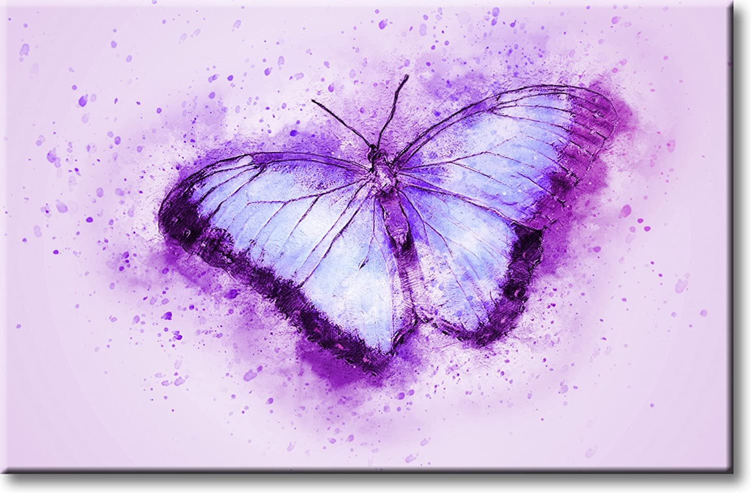 Amazon Com Beautiful Purple Butterfly Picture On Stretched Canvas Wall Art Décor Ready To Hang Posters Prints
