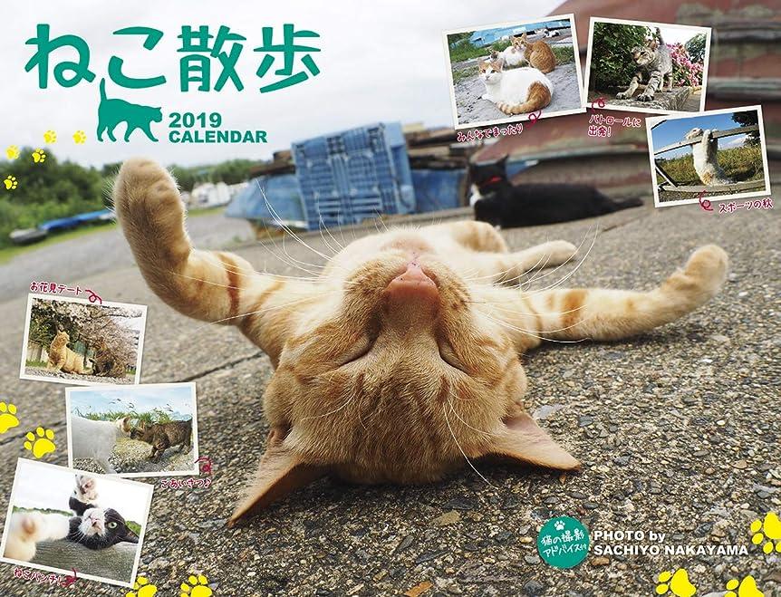 大宇宙かすれたキウイ2019 中山祥代 ねこ散歩カレンダー(壁掛け) ([カレンダー])