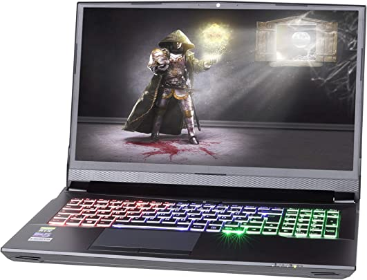 NEXOC Gaming Notebook Laptop  16 1 Zoll Full HD 144Hz  mit i7-8700  3 20GHz   RTX 2070 8GB  2X 250GB SSD  1TB SSD  64GB DDR4 RAM  G1602
