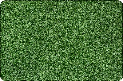 MAYSHINE Artificial Grass Door Mat Indoor/Outdoor Rug Green Turf Perfect for Multi-Purpose Home Entryway Scraper Doormat Dog Mats 24x35 inch