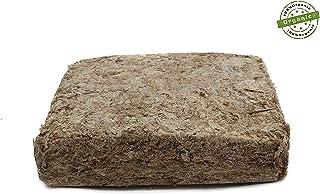 Musgo de esfagno (Chile, 1000g
