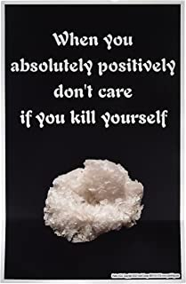 Poster #211 Meth, Drug Use Prevention Message Posters