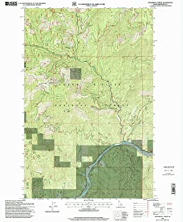 YellowMaps Steamboat Creek ID topo map, 1:24000 Scale, 7.5 X 7.5 Minute, Historical, 1996, Updated 1999, 26.7 x 22 in