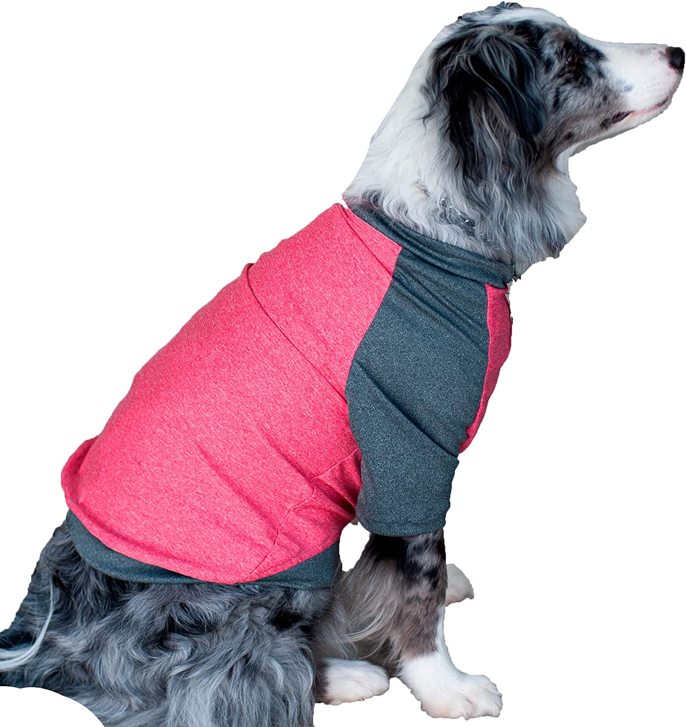 Popular products Dog Shirt Raglan for Medium Clothes Dogs We OFFer at cheap prices Large Durable Ela