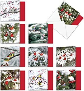 Assorted Boxed of 10 'Christmas for the Birds' Thank You Cards w/Envelopes 4 x 5.12 inch - Pretty Birds in Snow Wearing Santa Hats - Happy Holidays, Seasons Greetings and Merry Xmas MQ5030XTG-B1x10