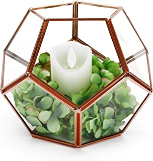Rose Gold Geometric Terrarium Glass Planter Box Modern Round Flower Pot Window Sill Balcony Tabletop Wedding Decor Centerpiece DIY Display Container for Succulents Fern Moss Air Plants Gift (No Plant)