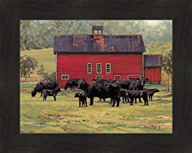 Best angus cattle images Reviews