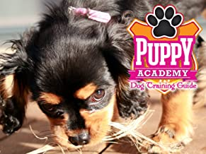Puppy Academy: Dog Training Guide