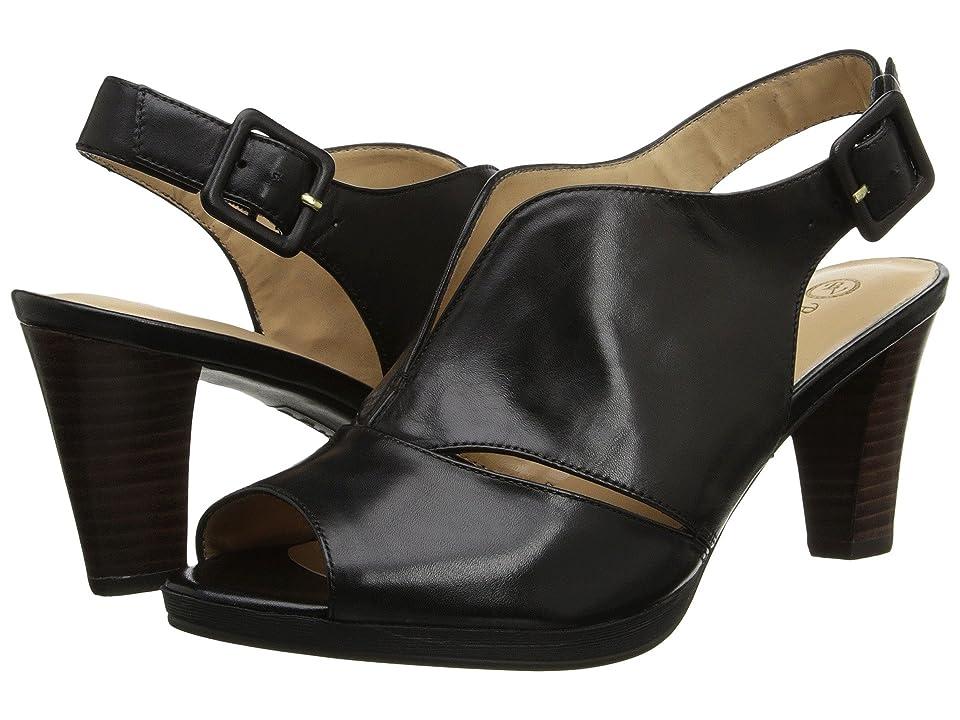 Bella-Vita Leona (Black) High Heels