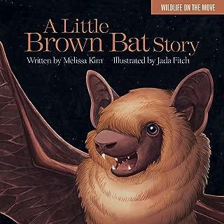Best bat stories online Reviews
