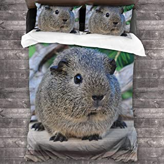 pengyong Duvet Cover Set Cute Hamster 3 Piece Bedding Set Comforter Set with 2 Pillow Shams Zipper-Extra Long Perfect for Any Bed Room Or Guest Room