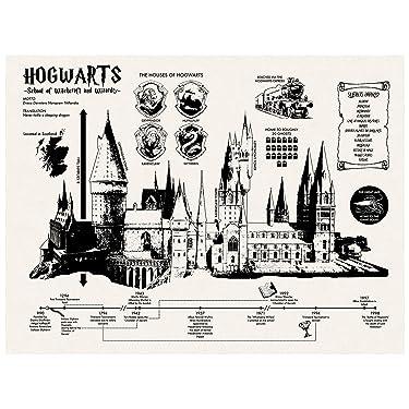 Inked and Screened SP_Arch_HogwartsInfo_TW_24_K Wall Art,Speckletone True White,18 x 24 Inch