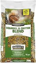 Wild Bird BRD-516267 Horse Squirrel Feeder Brown