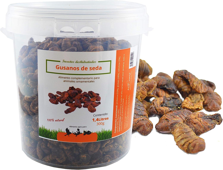 FINCA CASAREJO Gusanos de Seda Secos. Alimento para Aves Silvestres, gallinas, Patos, y Aves de Corral. (1250)