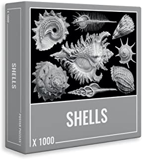 Shells: Cool, Premium 1000-Piece Jigsaw Puzzle for Grown Ups and Adults!