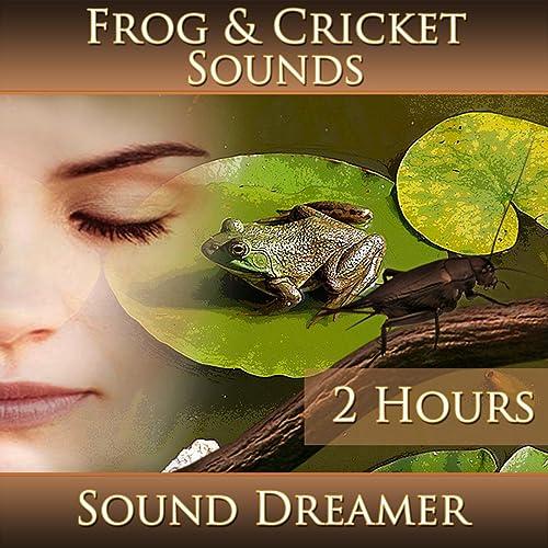Frog Sound: Amazon com