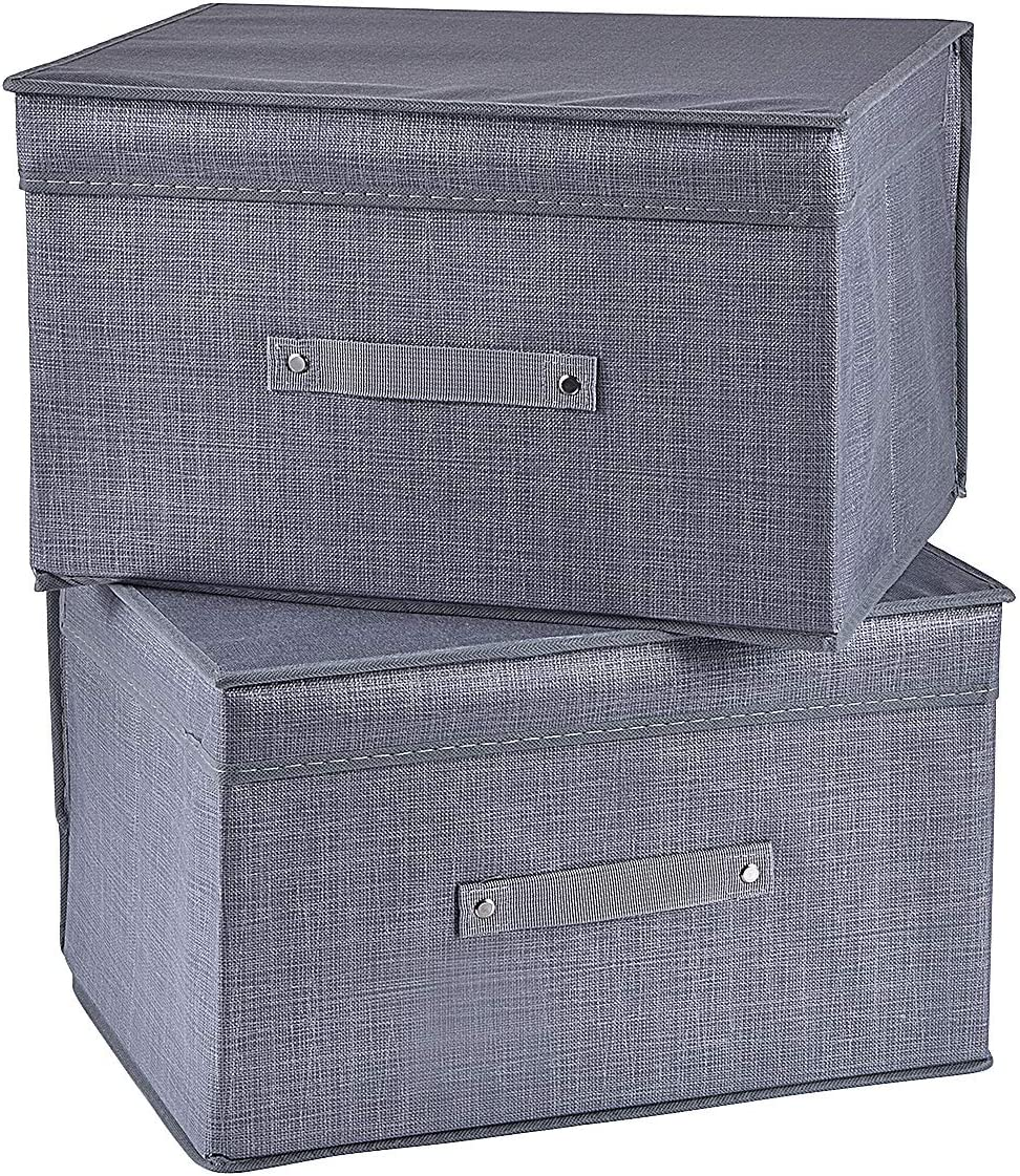 BEBORIN Foldable Animer and price revision Storage Bins 2 and with Boxes Pack Lids Choice