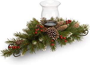 National Tree 30 Inch Frosted Berry Centerpiece with 1 Candle Holder and Glass Hurricane (FRB3-800-30C-A3)
