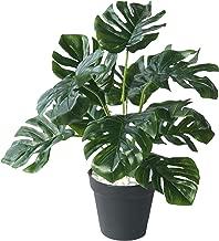 60 cm künstliche Palme Pfanze Ficus Zimmerpflanze Gummibaum wie echt Topf 1959